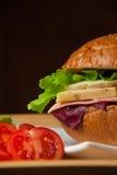 Bocadillo con el pollo, el queso y la ensalada Imágenes de archivo libres de regalías