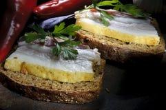 Bocadillo con manteca de cerdo, ajo y pimienta salados Imagen de archivo