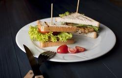 Bocadillo con queso, el pollo frito, los tomates y la ensalada fotos de archivo