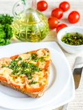 Bocadillo con queso y tomates derretidos Imagenes de archivo
