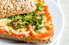 Bocadillo con queso y tomates derretidos Fotografía de archivo
