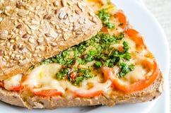 Bocadillo con queso y tomates derretidos Imagen de archivo libre de regalías
