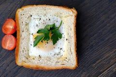 Bocadillo de la aptitud con el huevo y los tomates Imágenes de archivo libres de regalías