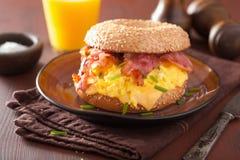 Bocadillo del desayuno en el panecillo con queso del tocino del huevo Imagenes de archivo
