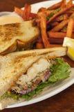 Bocadillo del halibut con las fritadas de la patata dulce Imagen de archivo libre de regalías