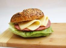 Bocadillo del queso Fotografía de archivo libre de regalías