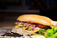 Bocadillo largo con la carne, las verduras y la salsa de barbacoa Fotografía de archivo libre de regalías