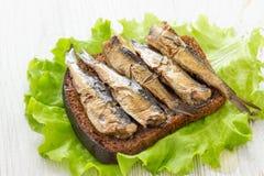 Bocadillo sabroso de los pescados con pan y espadines conservados imágenes de archivo libres de regalías