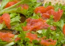 Bocadillos con los salmones, la lechuga y el pepino Foto de archivo