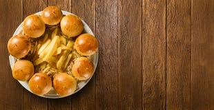 Bocadillos tirados del cerdo con la salsa y la cebolla del Bbq Imagen de archivo libre de regalías