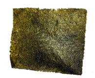 Bocado de la mala hierba del mar Fotos de archivo libres de regalías