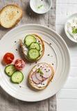 Bocado sano - bocadillos con el queso cremoso, el pepino y los rábanos Foto de archivo