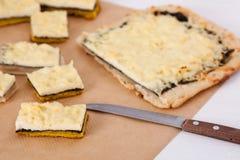 Bocado vegetariano del queso Fotografía de archivo libre de regalías