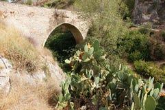 Bocairent puente y chumbera 库存图片