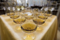 Bocals für Weinbrand Stockfotografie
