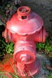 Bocas de incendios al aire libre rojas Foto de archivo libre de regalías