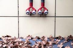 Bocas de incendios rojas en la pared beige ligera con las hojas de arce en la tierra en Berlin Germany abstraiga el fondo fotografía de archivo libre de regalías