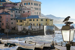 Boccadasse Stock Photography