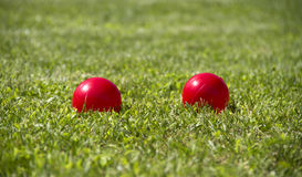 Bocce ball Stock Image