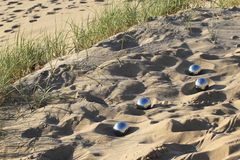 Bocce balls Royalty Free Stock Images
