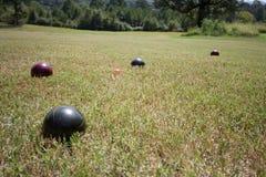 Boccii Ball. Bocci Ball is a yard game Royalty Free Stock Image