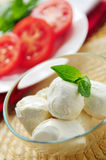 Bocconcini cheese Stock Images