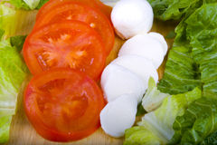 Bocconcini cheese with fresh tomato and Lettuce Royalty Free Stock Photos
