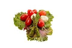 Bocconcini del tomate Fotografía de archivo libre de regalías