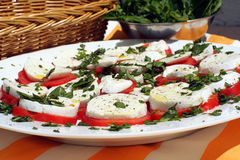 Bocconcini picnic platter 2. Lower angle view of a picnic platter of bocconcini salad Royalty Free Stock Photography
