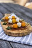 Bocconcini skewers with tomato on prosciuto and pesto Stock Photography