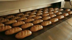 Bochenek chleb na linii produkcyjnej w piekarni zbiory