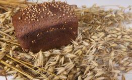 Bochenek domowej roboty chleb z czarnej musztardy ziarnami na stole z żyto owsami i spikelets zdjęcia stock
