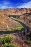Bochtige rivier Royalty-vrije Stock Foto