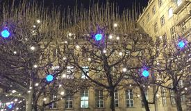 Bochum, Germania - 12 dicembre 2016: Lampade blu e bianche del LED sugli alberi sui precedenti del comune Bochum fotografia stock libera da diritti