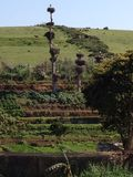 Bocian gniazduje przy Chellah Obrazy Stock