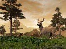 Bock i berget - 3D framför royaltyfri illustrationer