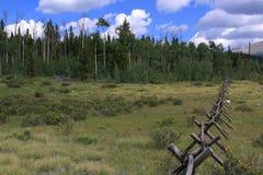 Bock- & stångstaket i Rocky Mountains Arkivbild