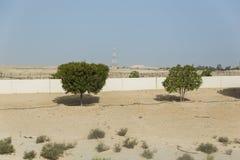 Boczna sposób pustynia Abu Dhabi droga, UAE Zdjęcie Stock