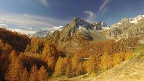 Boczny POV odprowadzenie na spadek ścieżce z drewien drzew, jeziornych i śnieżnych górami, Pogodny jesień dzień Wycieczkuje w kol zbiory wideo