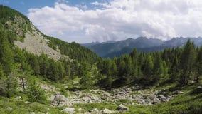 Boczny pov odprowadzenie wzdłuż śladu patrzeje dzikich drewna dolinnych wycieczkuje lub trekking przygoda w outdoors zielenieje n zdjęcie wideo