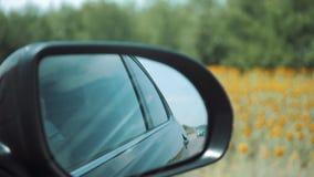Boczny tylni widoku lustro w ruch ampule zbiory wideo