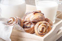 Boczny widok biała śniadaniowa taca z mlekiem w szklanym słoju, croi Zdjęcie Stock