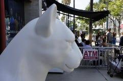 Boczny widok Biała lew głowa Fotografia Stock