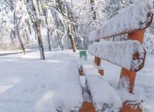 Boczny widok drewniana ławka na śnieżnym naturalnym zimnym dnia lesie obrazy royalty free