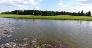 Boczny widok jogging kobieta blisko rzeki z łabędź podczas słonecznego dnia zbiory wideo