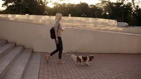 Boczny widok kobiety odprowadzenie z psem przy smyczem w mieście Chodzący w dół schodki w parku, trzyma pomarańcze zdjęcie wideo