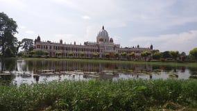 Boczny widok królewiątka miejsce zdjęcie royalty free