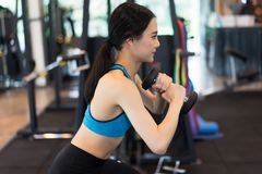 Boczny widok młoda piękna kobieta w sportswear robi pękatemu dowcipowi Fotografia Stock