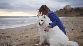 Boczny widok młodej kobiety obsiadanie na piasku i obejmowanie jej psy Samoyed hodują morzem Jeden początki zbiory