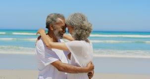Boczny widok szczęśliwa aktywna starsza amerykanin afrykańskiego pochodzenia para obejmuje each inny na plaży 4k zbiory wideo
